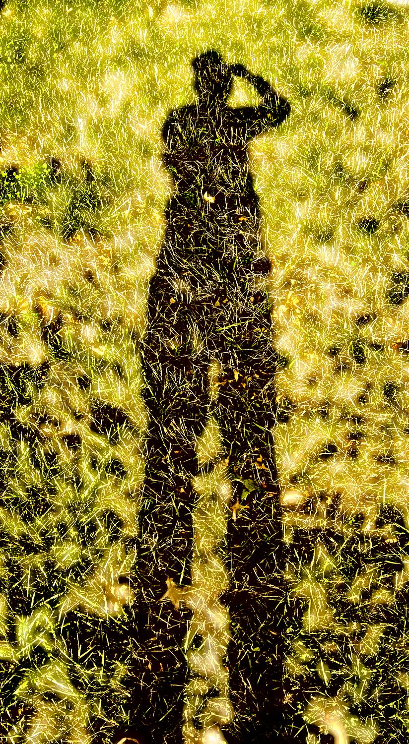 silhouette of the artist - Me on grass - Kodak Easyshare P880 - - art  - photography - by Tony Karp