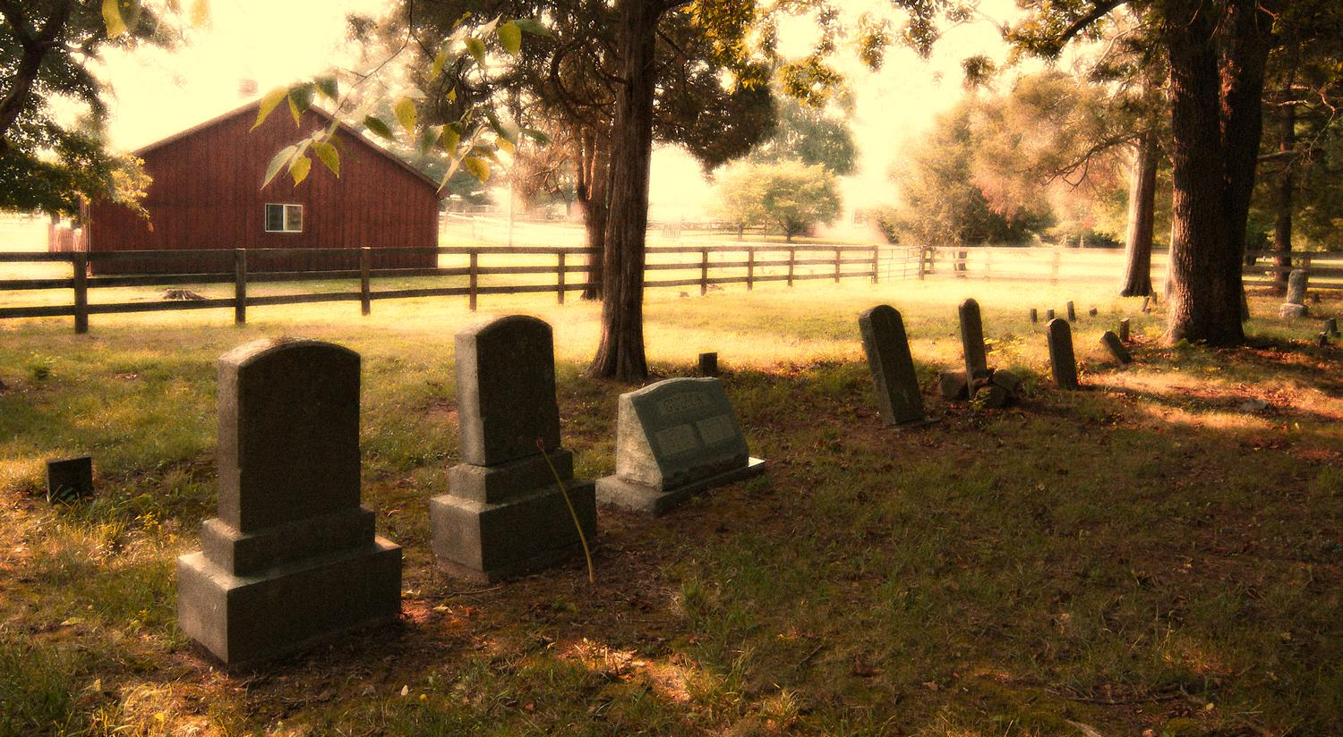 - Cemetery on our road - Kodak Easyshare P880 - - art  - photography - by Tony Karp