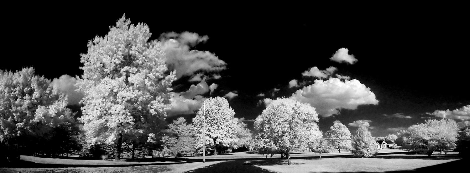 infrared panorama - Infrared in front of our house - Kodak Easyshare P880 - - art  - photography - by Tony Karp