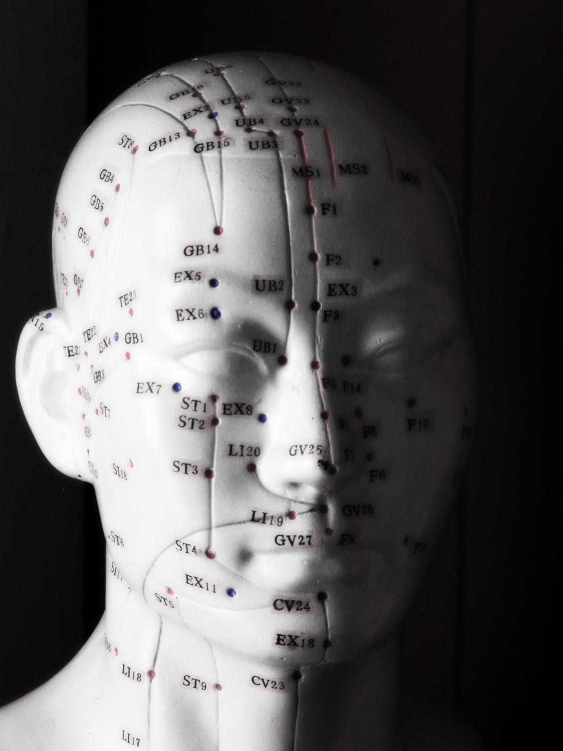 Acupuncture head - Portrait of Pinhead - Kodak Easyshare P880 - - art  - photography - by Tony Karp