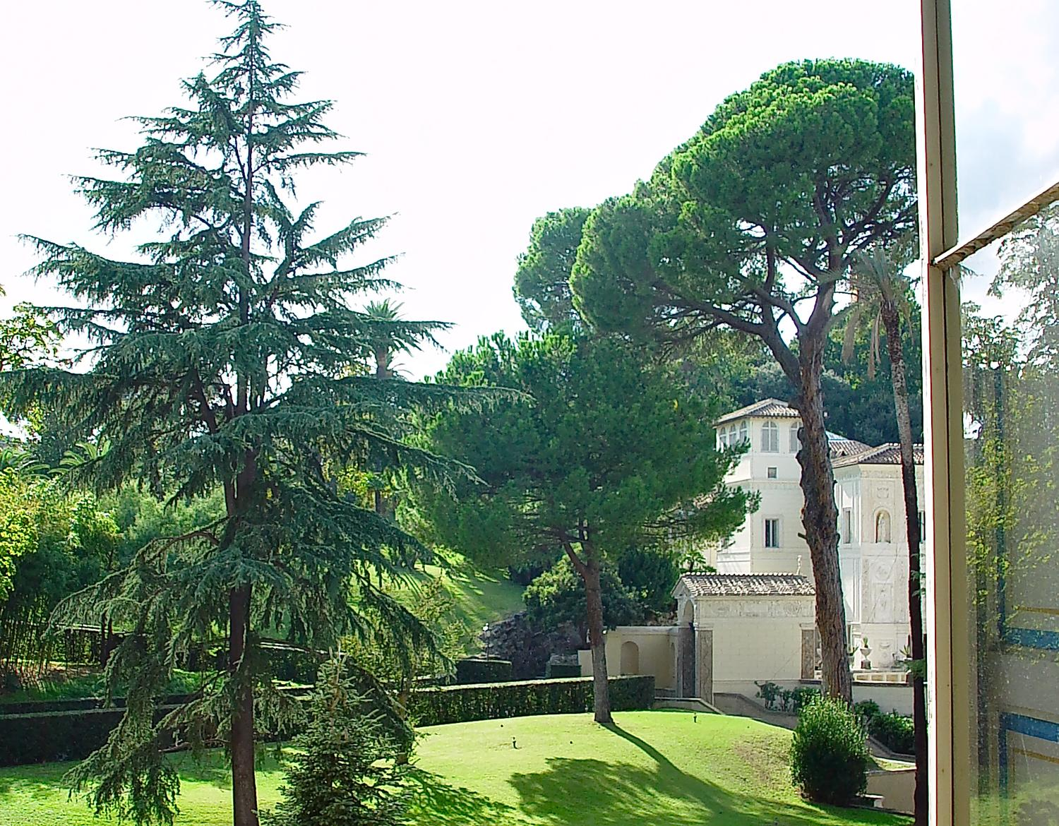- View from a Vatican window. The stone pine tree is on the right. Note the distinctive umbrella shape. - - Italian Stone Pine Tree - Umbrella Pine - Pinus Pinea - - Tony Karp, design, art, photography, techno-impressionist, techno-impressionism, aerial photography , drone , drones , dji , mavic pro , video , 3D printing - Books -