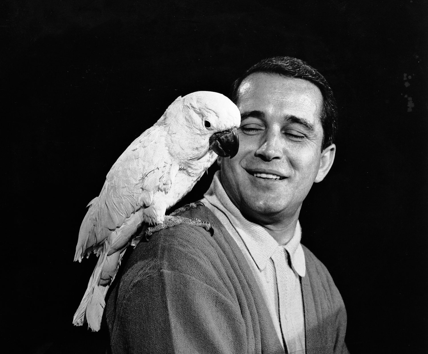 - Perry Como with friend. Yes, it's a real bird. - Perry Como Show - NBC - Tony Karp, design, art, photography, techno-impressionist, techno-impressionism, aerial photography , drone , drones , dji , mavic pro , video , 3D printing - Books -
