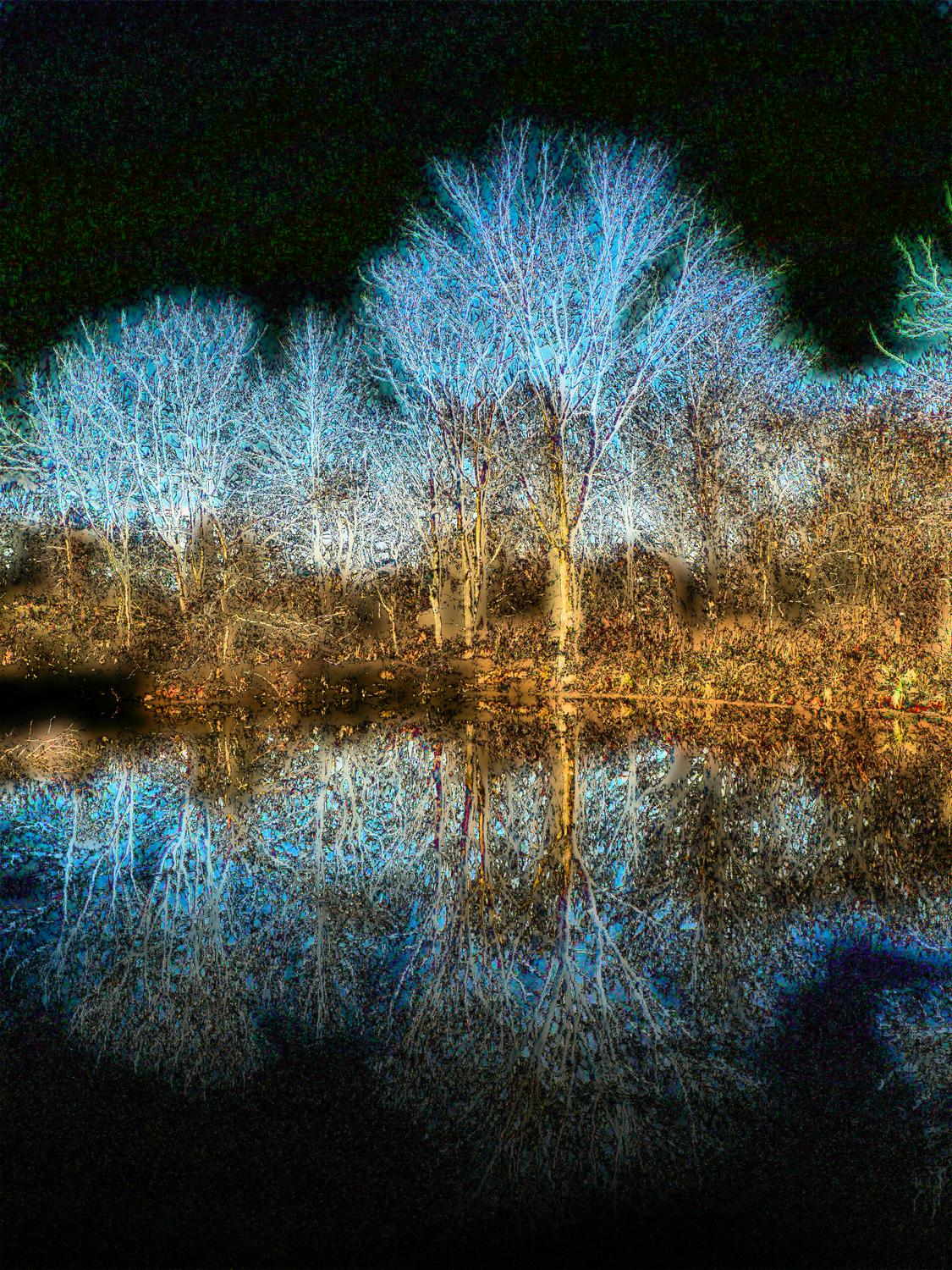Glowing tree reflected in water - - Adding some fantasy - Ida Lee Park, Leesburg Virginia - Panasonic DMC-FZ5 - Tony Karp, design, art, photography, techno-impressionist, techno-impressionism, aerial photography , drone , drones , dji , mavic pro , video , 3D printing - Books -