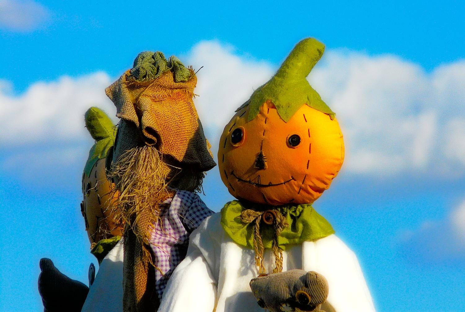 fantastical shot of a pumpkin scarecrow, with friends, like something from The Wizard of OZ - Mr. Pumpkin's fantasy - Panasonic DMC-FZ18 - - art  - photography - by Tony Karp