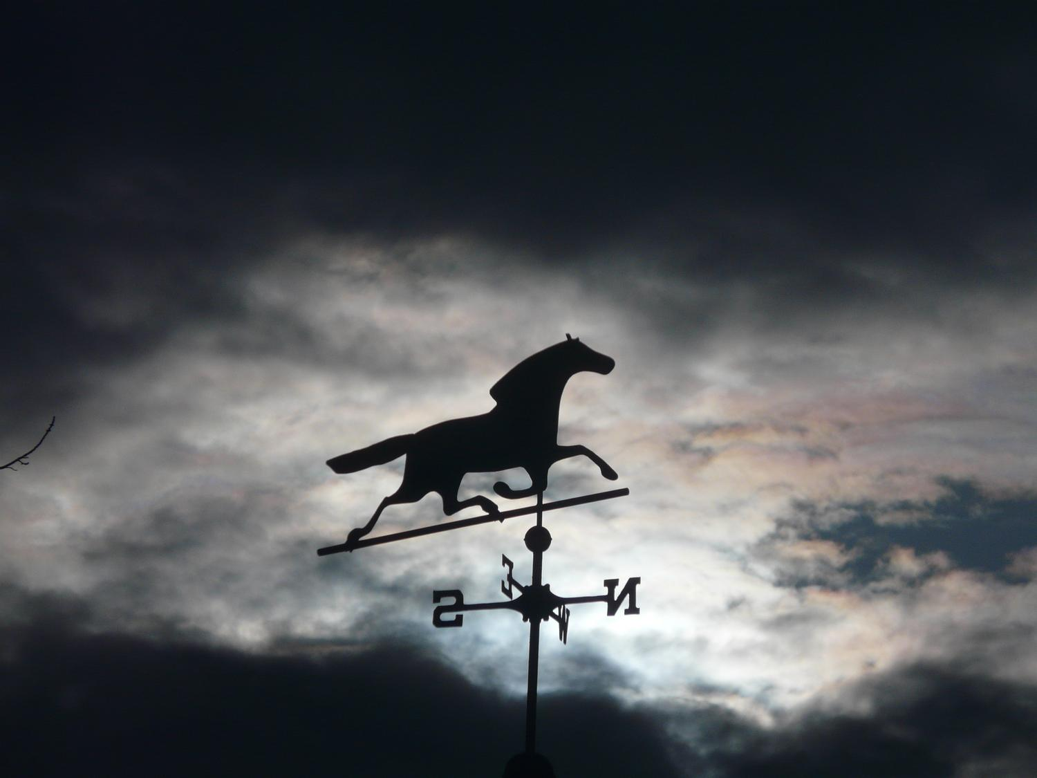 - Horse over my head, against the clouds and sun - Tony Karp, design, art, photography, techno-impressionist, techno-impressionism, aerial photography , drone , drones , dji , mavic pro , video , 3D printing - Books -