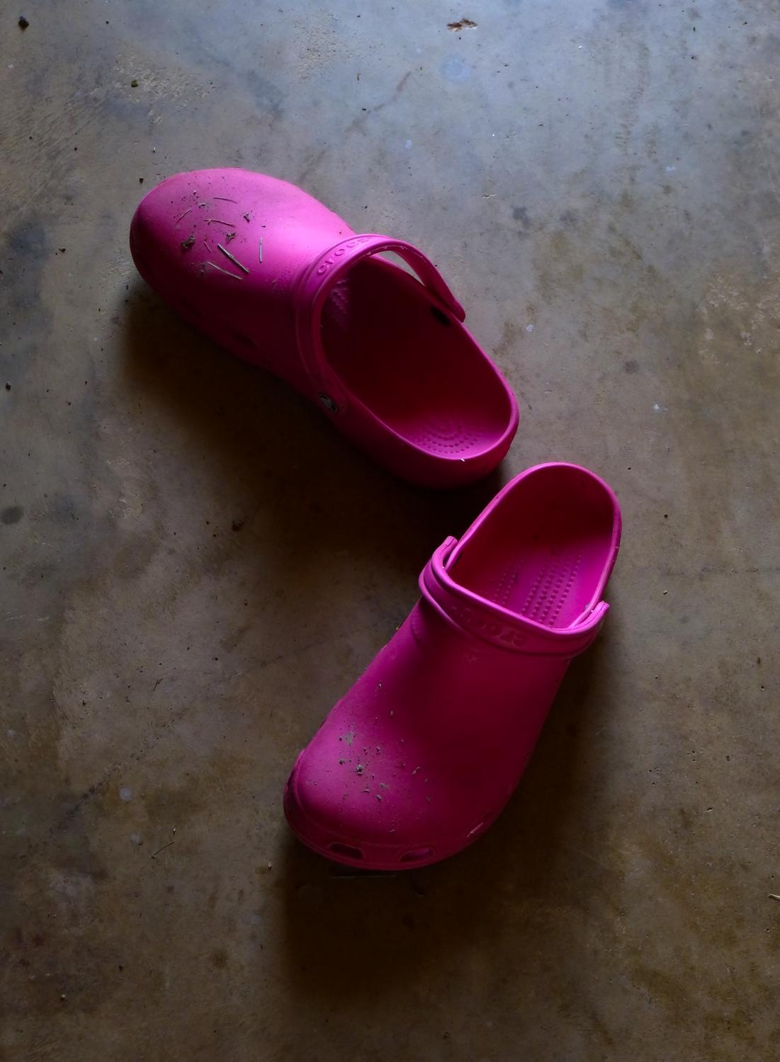 pink crocs - The Hobbitt's Crocs. - Panasonic DMC-FZ35 - Tony Karp, design, art, photography, techno-impressionist, techno-impressionism, aerial photography , drone , drones , dji , mavic pro , video , 3D printing - Books -