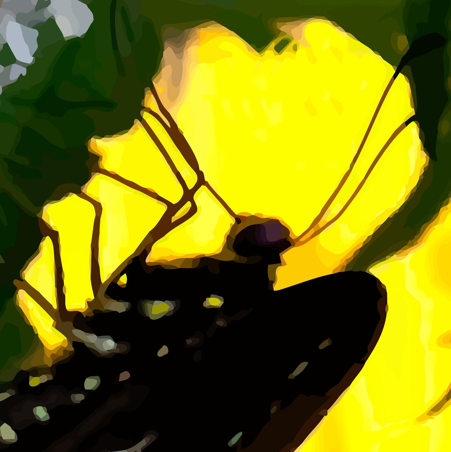 - This is a close-up of what the vector-based image looks like.<br> It's no longer a photograph. - Retouching a picture of a swallowtail butterfly - Panasonic DNC-LF1 - butterfly in Havana. - Tony Karp, design, art, photography, techno-impressionist, techno-impressionism, aerial photography , drone , drones , dji , mavic pro , video , 3D printing - Books -